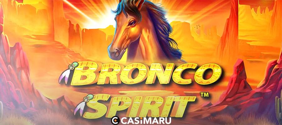bronco-spirit-banner