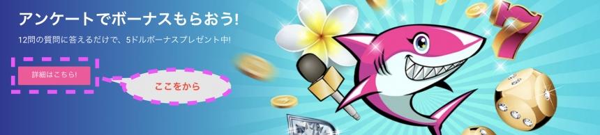 aloha-non-deposit-bonus